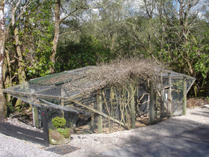 Aviary - The neighbours' accommodation at The Owlery Salen Ardnamurchan Scotland